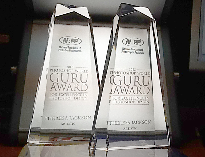 image of 2 Artistic Guru Awards from NAPP